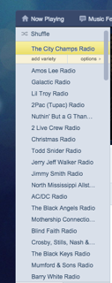 Figure 4.  Nathan's Pandora music list