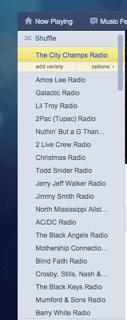 Figure 4. Nathan's Pandora music list